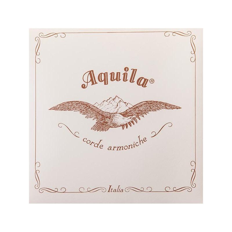 Cuerdas - Cuerda Aquila tripa/plata, 163F, heavy
