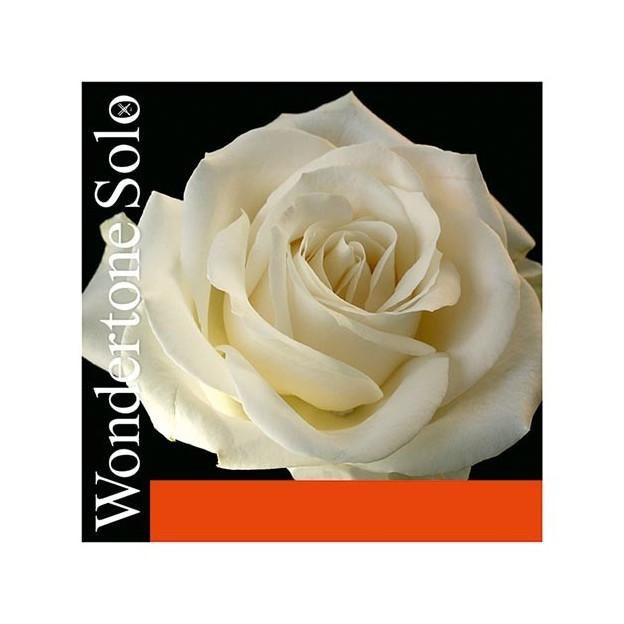 Cuerda violín Pirastro Wondertone Solo 410321 3ª Re plata Medium