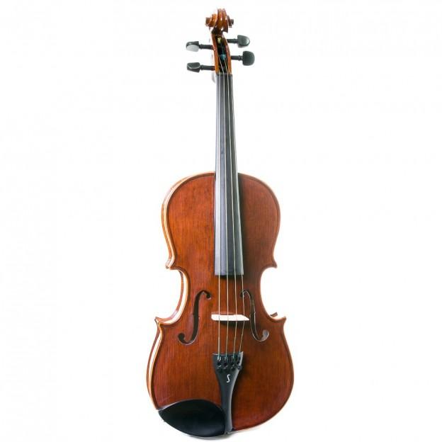 Viola stentor Conservatoire