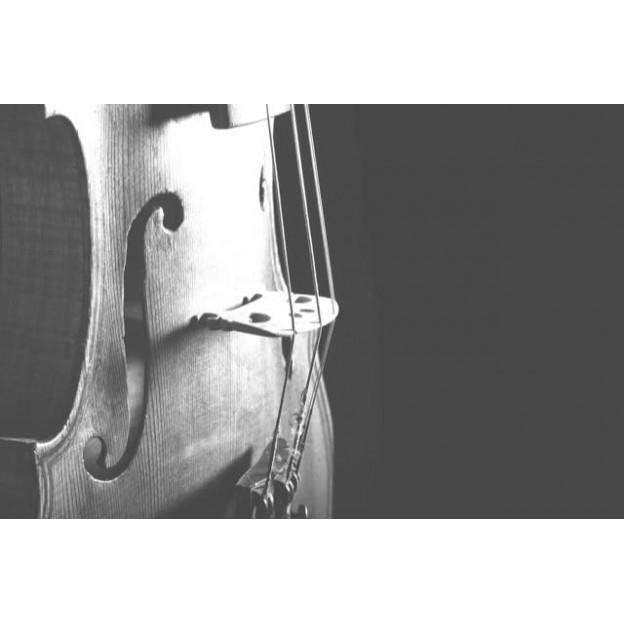 GC27 Postal de felicitación blanco y negro violín